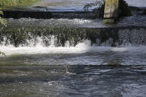Unser Oberflächenwasser hat nicht überall die gleiche Qualität. In Deutschland müssen wir dennoch kein Wasser sparen.